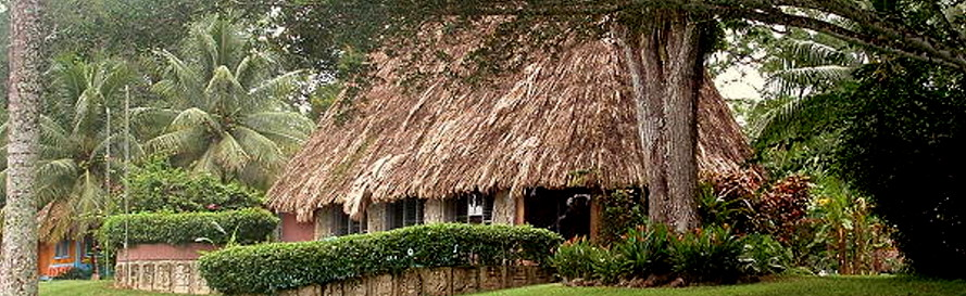 jungle-destinations-headerJPG